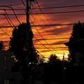 写真: 夕焼け_1
