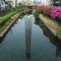 Photos: 東京カワモツリー