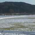 Photos: 北陸本線の車窓0017