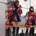 木之本七本槍祭り(KRD8)0162
