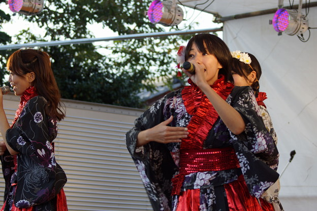 Photos: 木之本七本槍祭り(KRD8)0202