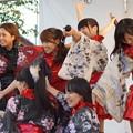 木之本七本槍祭り(KRD8)0220