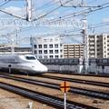 Photos: 姫路駅の写真0096