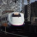 写真: E2系J14編成 (1)