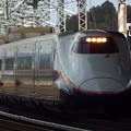 写真: E2系J14編成 (2)