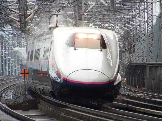 E2系J54編成 (5)