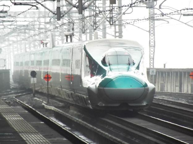 E5系U編成 (6)