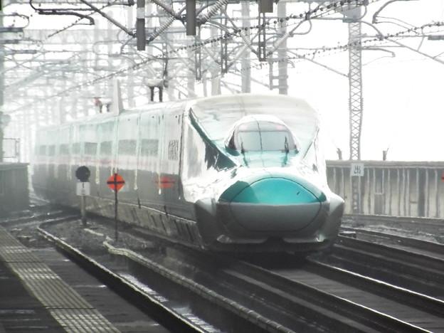 E5系U編成 (7)