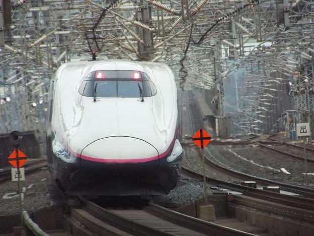 E2系J69編成 (3)