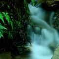 写真: 小さな滝!