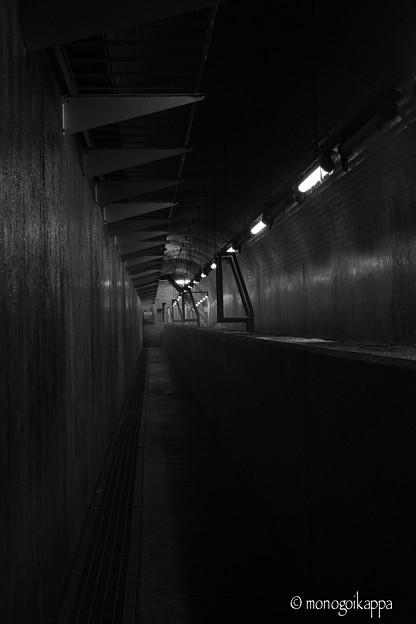白丸ダム_06魚道-5982