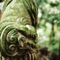 Photos: 十二所神社の狛犬_LeicaM6-000024
