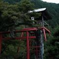 松姫神社-6134