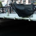 写真: 船橋-6144