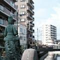 写真: 船橋-6164