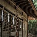 写真: 武田八幡宮03_拝殿-6219