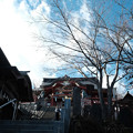 写真: 御嶽神社_08石段から拝殿をのぞむ-7037