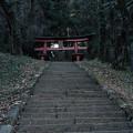 新府城02_本丸への階段-7082