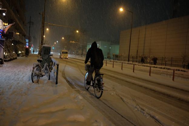 大雪_自転車-3964