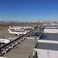 1月31日 朝は羽田空港1タミへ。。SKYMARK狙いで。。笑