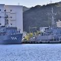Photos: 長浦港停泊中 あわじ型掃海艦と掃海艇はつしま20170918