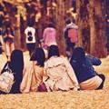 色づくいちょうの絨毯で女子撮影会。。(^^)20171104