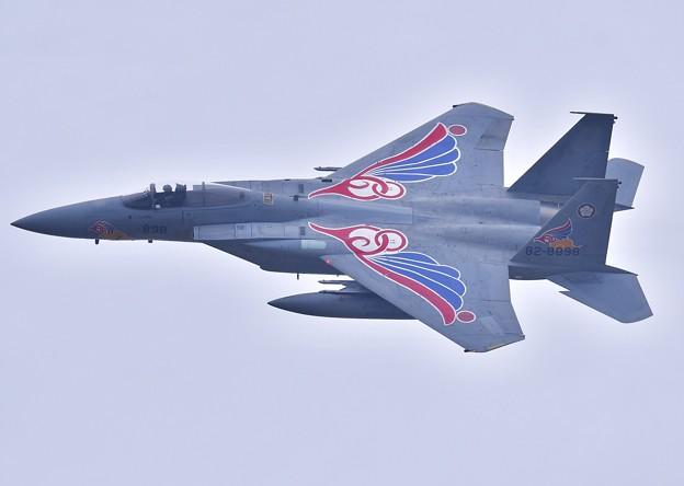 築城基地航空祭。。軽めのお背中見せ新田原のスペマ機第205飛行隊F-15