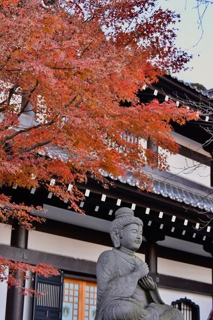 Photos: 夕暮れの長谷寺境内の紅葉。。20171209