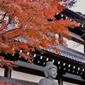 写真: 夕暮れの長谷寺境内の紅葉。。20171209