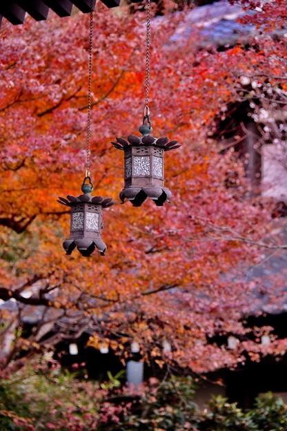 長谷寺灯籠と終わりの紅葉。。20171209