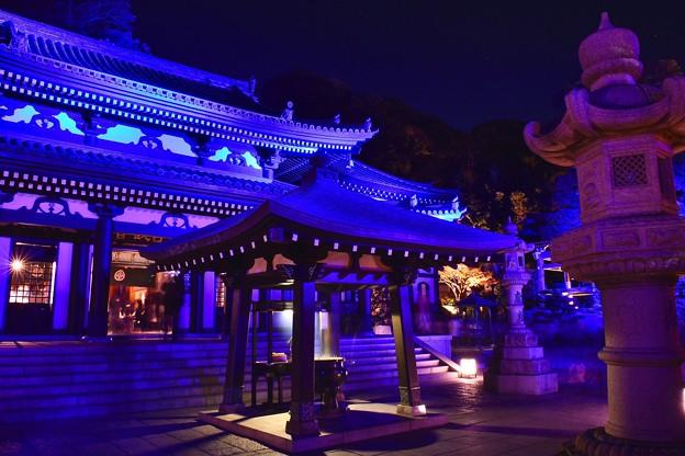 青紫のライトアップされた長谷寺境内。。20171209