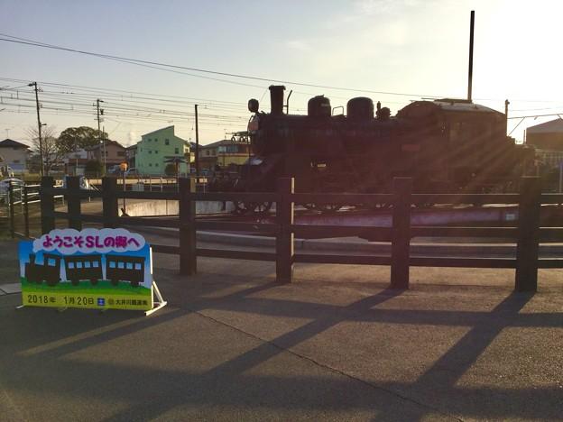 撮って出し。。大井川鉄道朝日を浴びてSLの里 1月20日