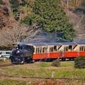 小湊鉄道トロッコ列車。。カーブを抜けて 20171210