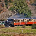 写真: 小湊鉄道トロッコ列車。。カーブを抜けて 20171210
