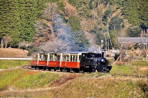 小湊鉄道の可愛いトロッコ列車。。上総大久保 20171210