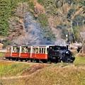 写真: 小湊鉄道の可愛いトロッコ列車。。上総大久保 20171210