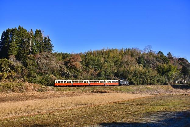 青空の下。。小湊鉄道トロッコ列車。。20171210