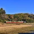 写真: 青空の下。。小湊鉄道トロッコ列車。。20171210