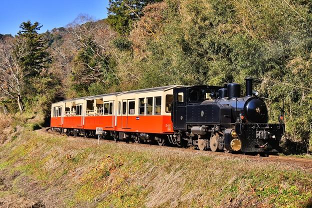 小湊鉄道。。上総大久保駅へ到着 トロッコ列車 20171210