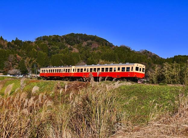 青い空の下を長閑な田園風景。。小湊鉄道 20171210