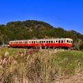 写真: 青い空の下を長閑な田園風景。。小湊鉄道 20171210