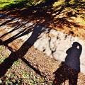 写真: 鉄道を待っている間。。影で遊ぶ。。上総大久保駅 20171210