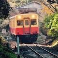 写真: 長閑な田舎を走る小湊鉄道。。キハ200系 20171210