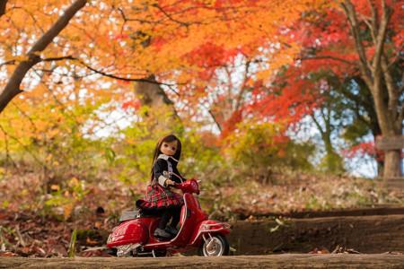 2014紅葉の鳥見山公園・6