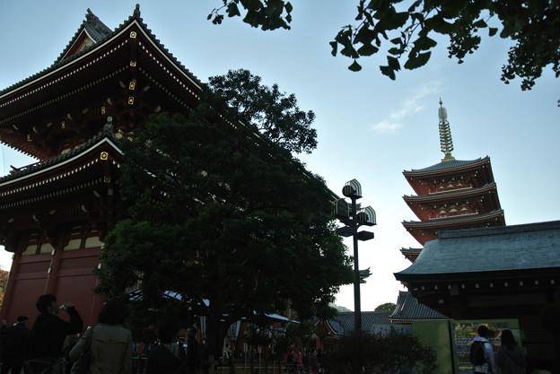 20141114_127