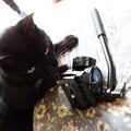 Photos: ビデオ雲台DSC08601