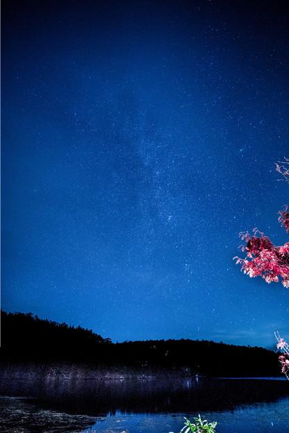 starShirogoma-00055-54_ed