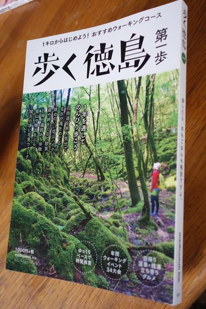 歩く徳島DSC08821