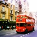 Photos: ロンドン名物