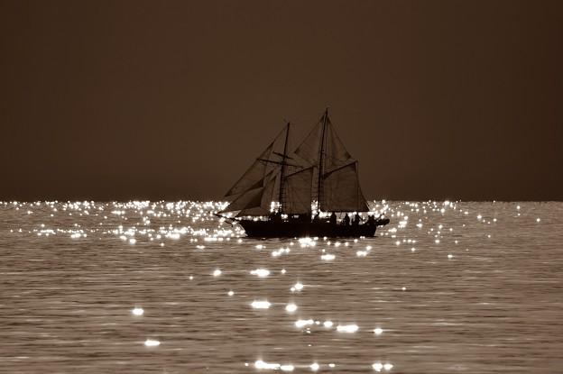 帆船・・・のたりのたりかな